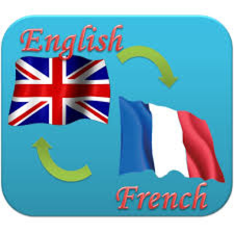 anunturi gratuite Meditatii engleza si franceza