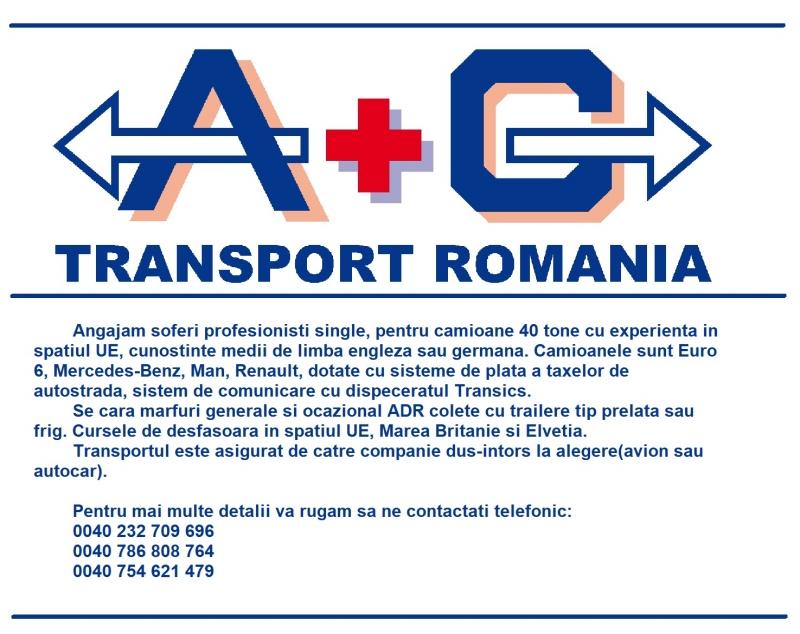 anunturi gratuite SOFERI PROFESIONISTI PE COMUNITATE