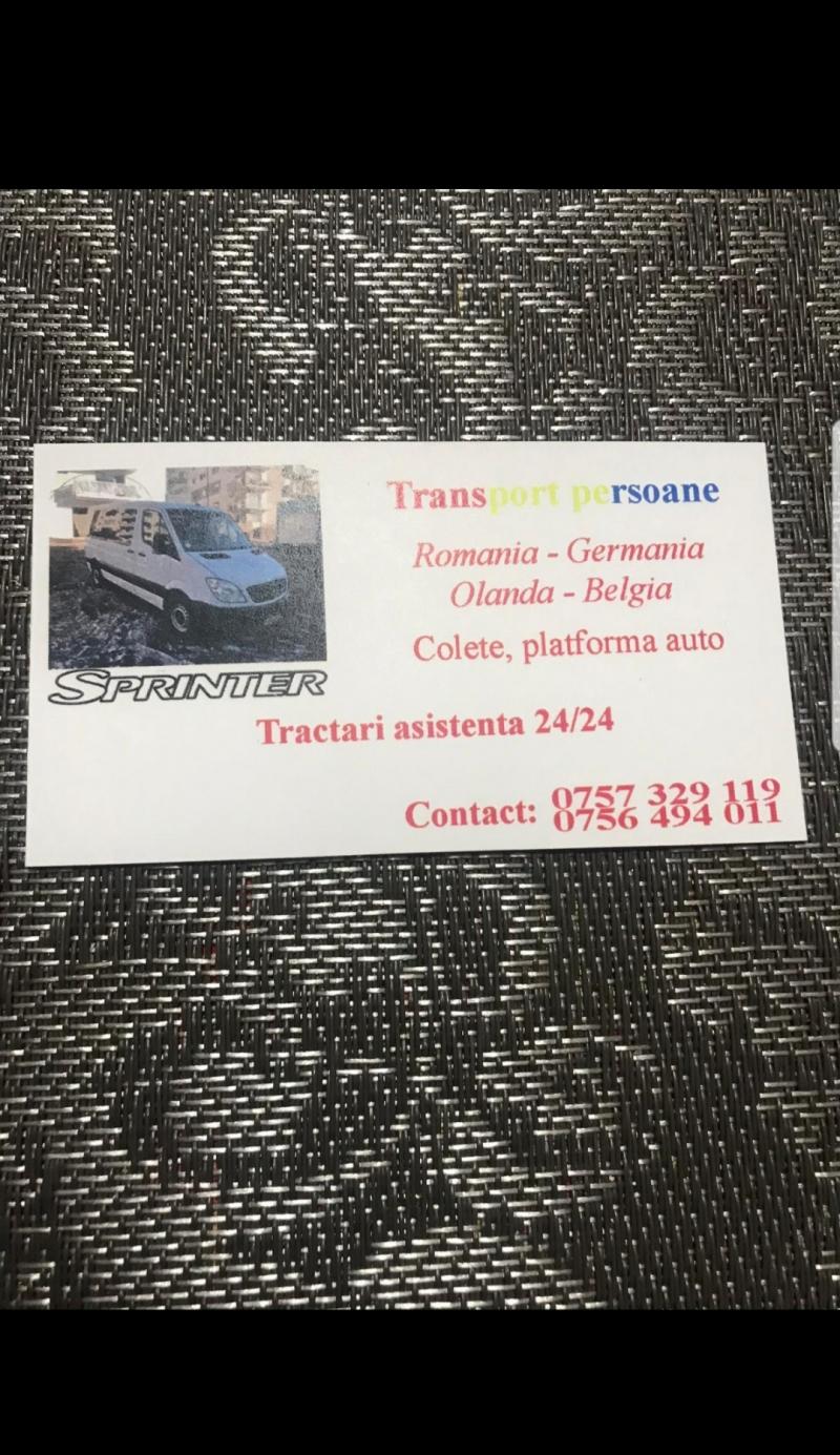anunturi gratuite Transport persoane