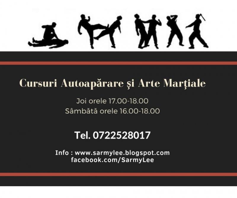 Cursuri autoaparare si arte martiale Mangalia și Constanta