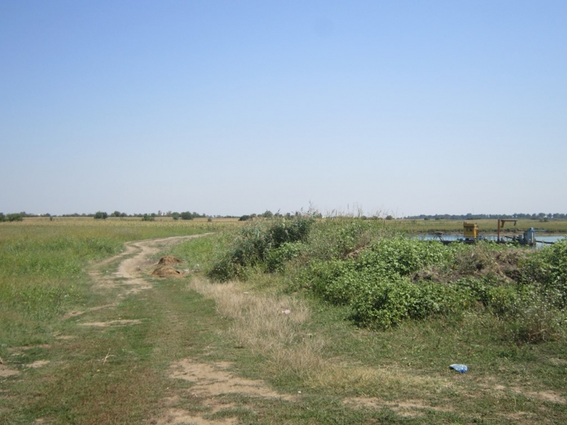 anunturi gratuite Teren agricol 43300 mp, Bolintin-Deal, Giurgiu